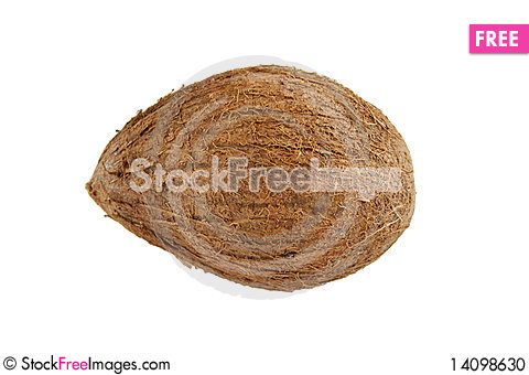 Free Coco Isolated On The White Background Stock Photo - 14098630
