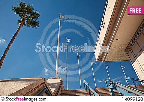 Free Flags At Downtown Tampa Stock Photo - 14099120