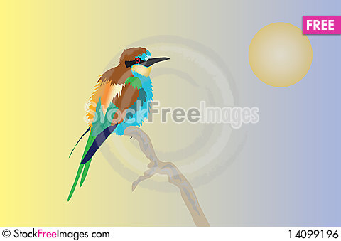 Free European Bee-eater Royalty Free Stock Image - 14099196