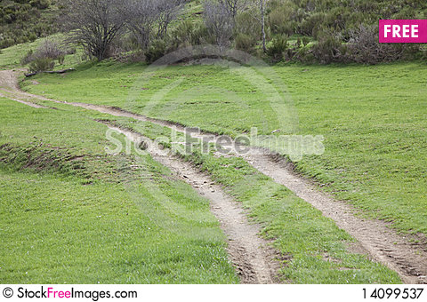 Free Green Road Royalty Free Stock Photography - 14099537
