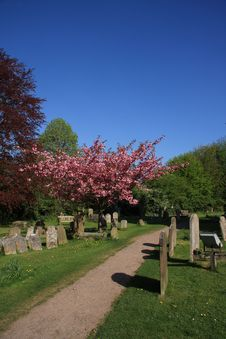 Springtime In The Churchyard Stock Images