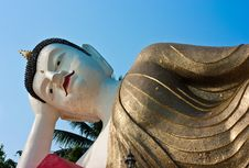 Free White Budda Royalty Free Stock Photos - 14091268
