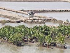 Free Vietnam Mekong Delta Stock Photos - 14092523