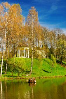 Free Spring  Grove Next To The Pond. Stock Image - 14095181