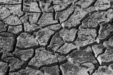Free Dry Land Stock Image - 14095481