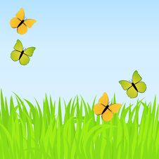 Free Spring Background With Butterflies Stock Photos - 14096303