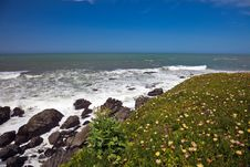 Free Ocean Coastline Landscape Royalty Free Stock Photos - 14097168