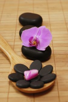 Spoon With Stones And The Orchid Royalty Free Stock Photos