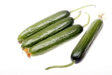 Free Green Cucumber Royalty Free Stock Images - 14099389