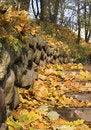 Free Autumn Park 1 Stock Photo - 1416350