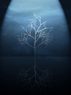 Free Tree In The Dark Royalty Free Stock Photos - 1410858