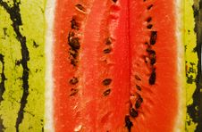 Bright Colourful Water-melon Royalty Free Stock Image