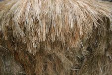 Free Thatch Stock Photography - 1412312