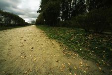Avenue In Bad Autumn Weather Stock Images