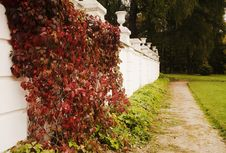 Free Landscape With Classical Elements Royalty Free Stock Photo - 1412925