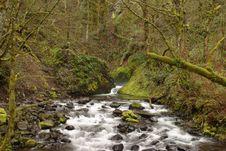 Free Bridal Veil Creek Stock Images - 1413314