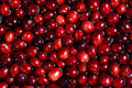 Free Floating Cranberries Royalty Free Stock Image - 14107726