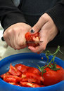 Free Cutting Tomato Stock Images - 14108774