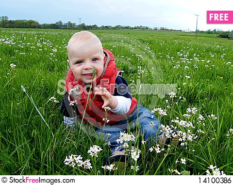 Free Baby Siting At Spring Meadow Royalty Free Stock Image - 14100386