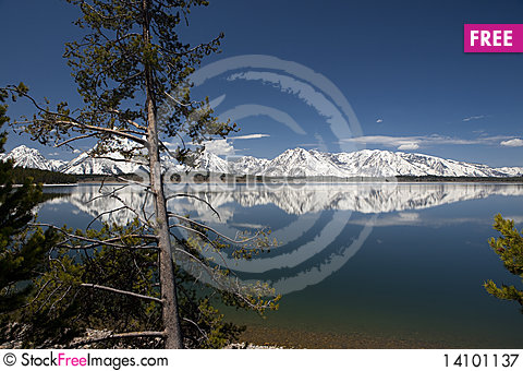 Free Grand Tetons Royalty Free Stock Photography - 14101137