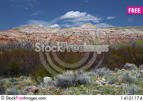 Free Wild In Wyoming Stock Images - 14101174