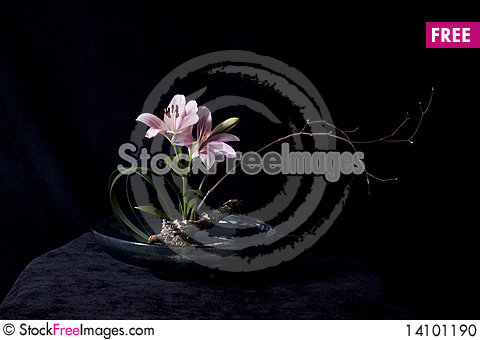 Free Ikebana Stock Photo - 14101190