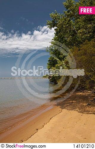 Free On The Beach Stock Photo - 14101210