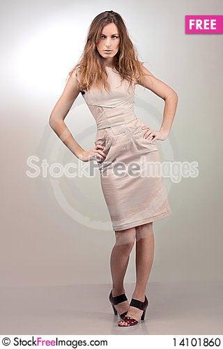 Free Beautiful Girl In A Dress Stock Photo - 14101860