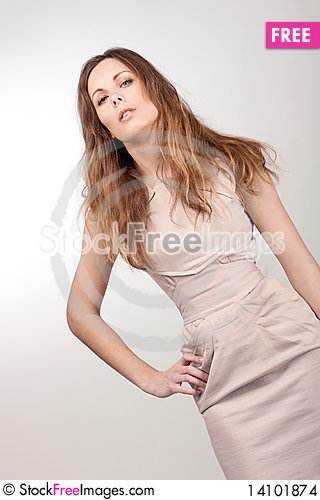 Free Beautiful Girl In A Dress Stock Images - 14101874
