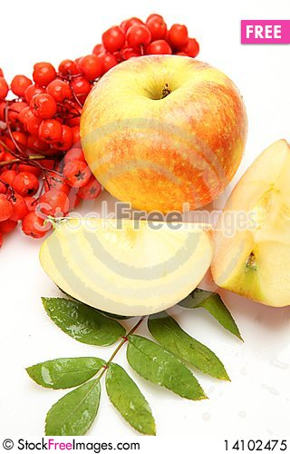 Free Fresh Fruit And Berries Royalty Free Stock Photo - 14102475