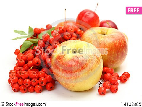 Free Fresh Fruit And Berries Royalty Free Stock Photo - 14102485