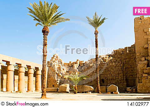 Free Palm Trees In Ruins Royalty Free Stock Photography - 14102977
