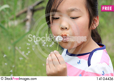 Free Little Girl Blowing Dandelion Royalty Free Stock Image - 14104436