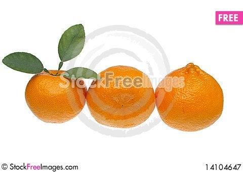 Free Mandarin Or Tangerine Royalty Free Stock Photography - 14104647