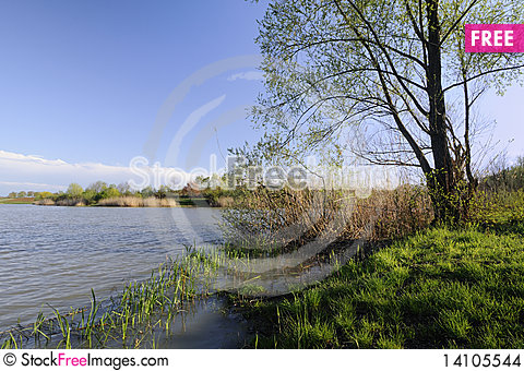 Free Lake In The Spring Stock Images - 14105544