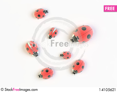 Free Ladybirds Stock Image - 14105621
