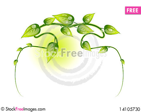 Free Floral Element Stock Photo - 14105730