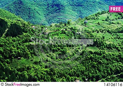 Free Bov Landscape Royalty Free Stock Image - 14106116