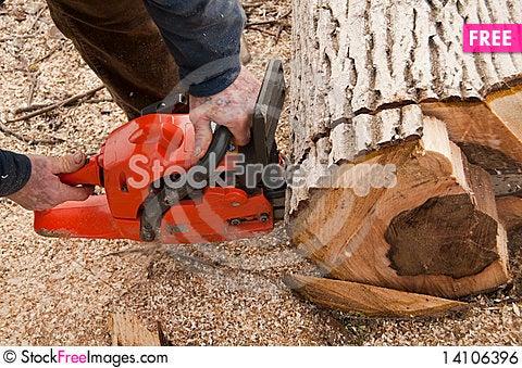 Free Lumberjack Cuting A Log Royalty Free Stock Image - 14106396