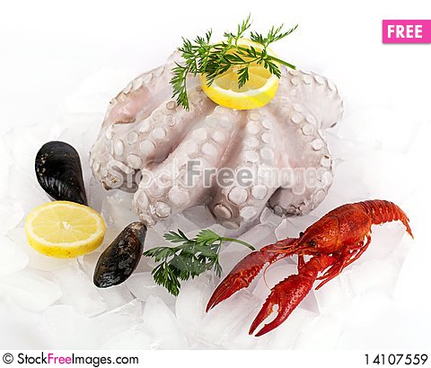 Free Seafood Royalty Free Stock Images - 14107559