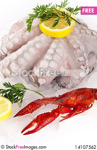 Free Seafood Stock Photography - 14107562