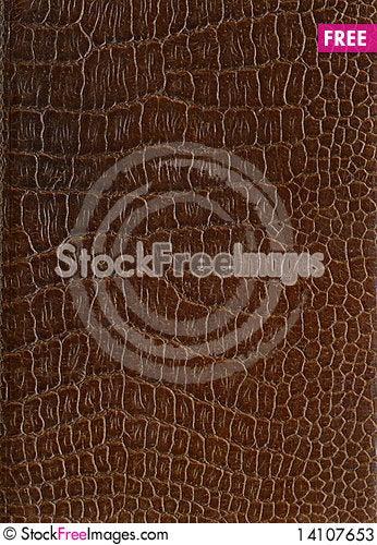 Free Crocodile Eather Stock Photos - 14107653