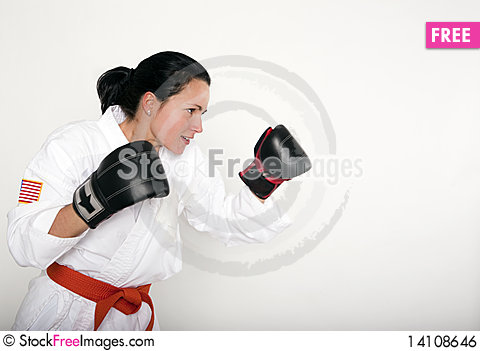 Free Beautiful Fighter Royalty Free Stock Image - 14108646