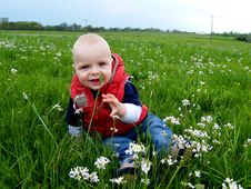 Baby Siting At Spring Meadow Royalty Free Stock Image