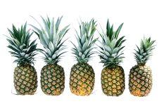 Five Pineapples Stock Photos