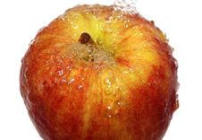 Free Fresh Apple Stock Photos - 14102493
