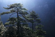 Free Highest Mountan Peak In JiangXi, China Stock Photos - 14102903