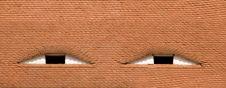 Free Eyes Stock Images - 14105684