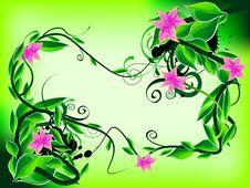 Free Floral Frame Stock Photos - 14105773
