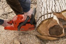 Lumberjack Cuting A Log Royalty Free Stock Image